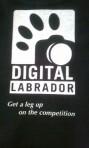 Digital Labrador